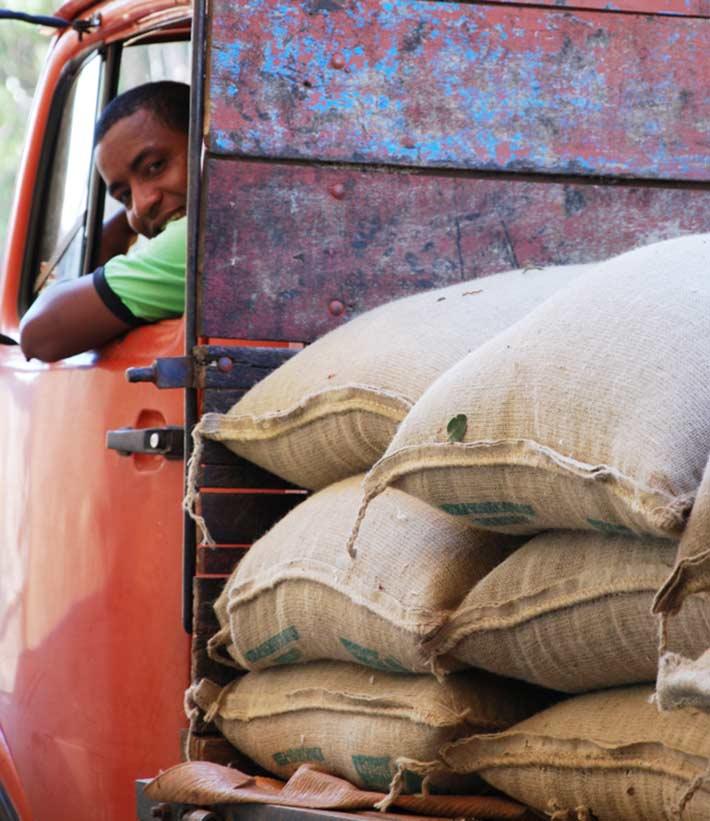 Lächelnder Fahrer in rotem Fahrzeug mit Ladefläche auf der sich viele Kaffeesäcke finden, in denen Rohkaffee transportiert werden